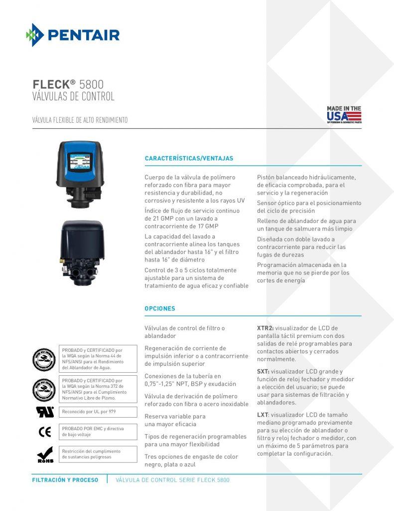Valvula Fleck 5800